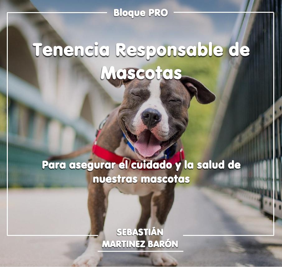 TENENCIA RESPOSABLE DE MASCOTAS. APROBADA LA INICIATIVA DE MARTINEZ BARÓN
