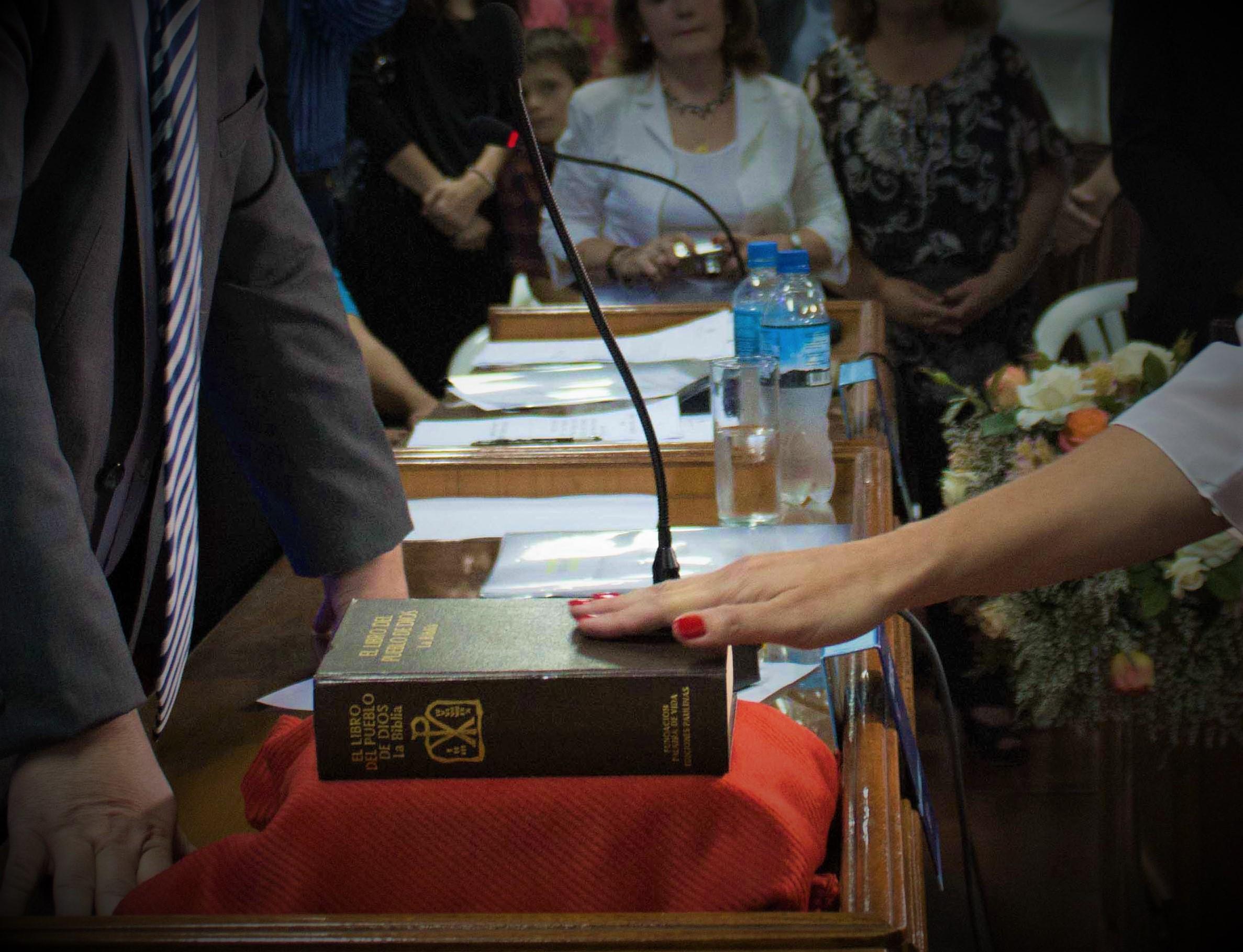 LEGISLATIVAS: QUEDÓ CONFIRMADA LA FORMACIÓN DEL HCD A PARTIR DEL 2018