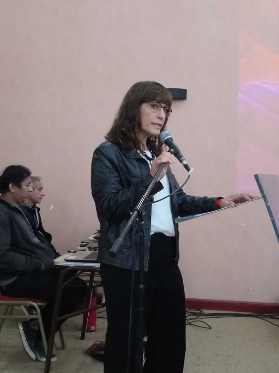 Audiencia Pública Complementaria: Remediación en Sierra Pintada.